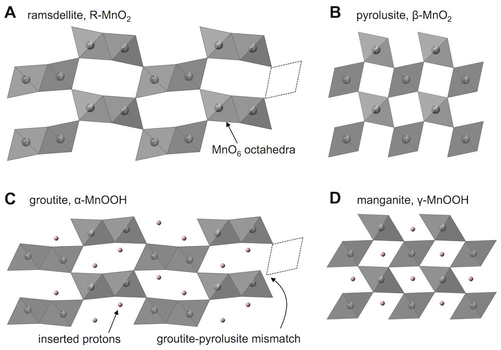 gamma-MnO2 protons in tunnels
