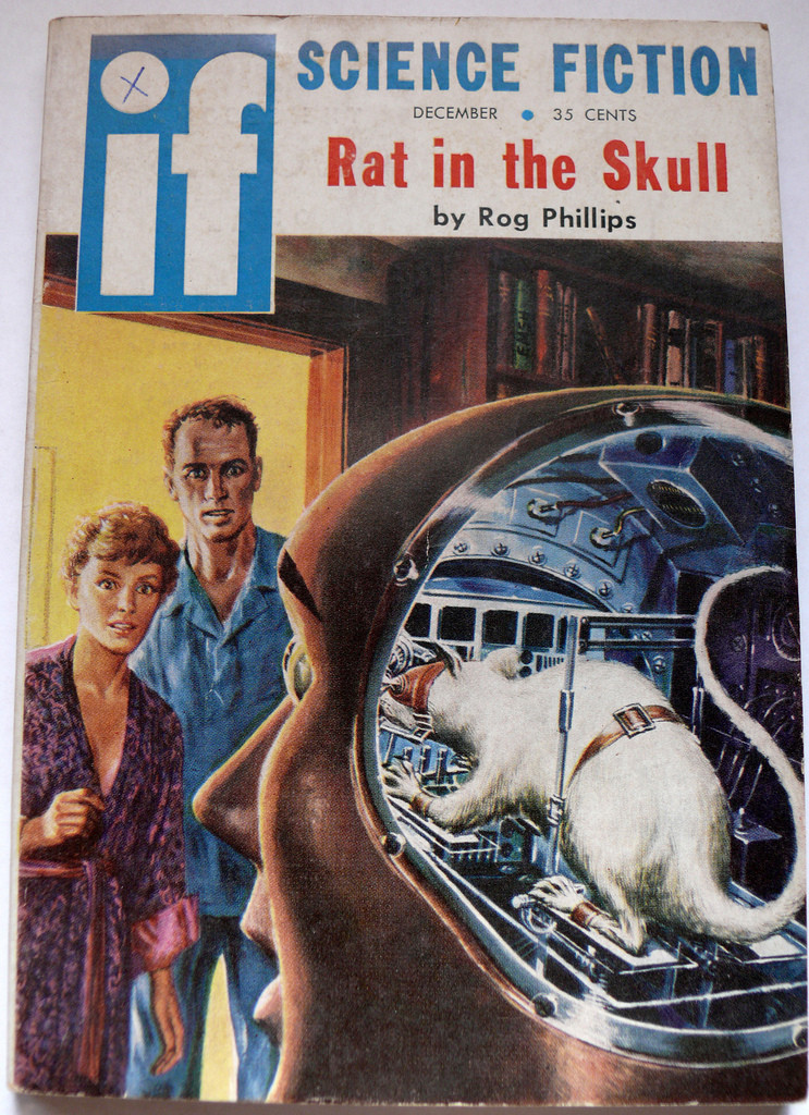 rat in the skull
